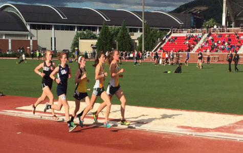 Miller advances on to state meet after breaking school record