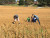 STEM academy takes soil sample field trip