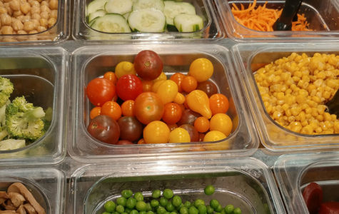 Horticulture class grows tomatoes for students