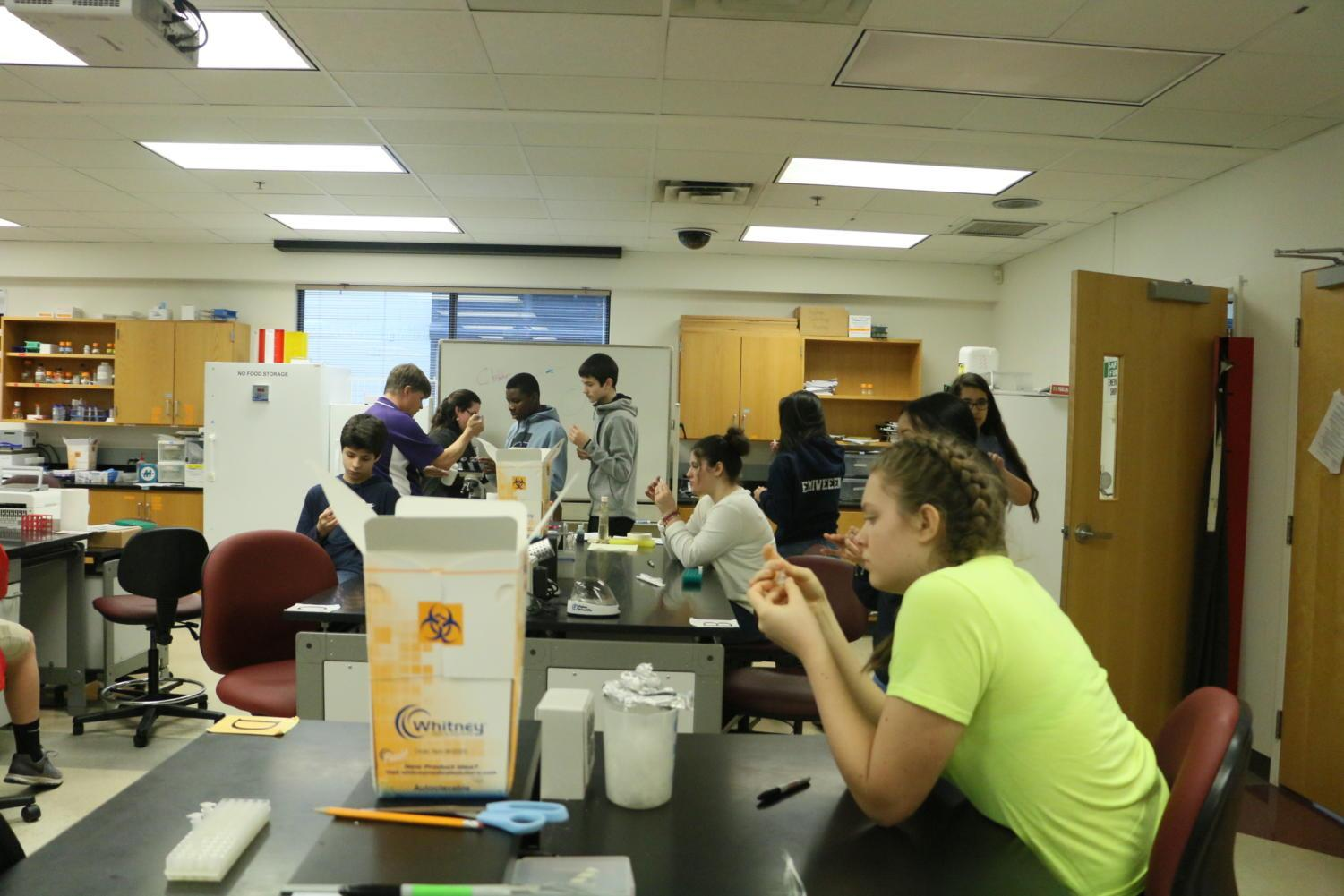 Freshmen part of the Governor's STEM Academy quantify their DNA.