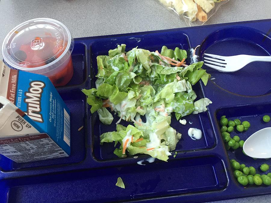 A student made salad from the salad bar sits on a lunch tray.